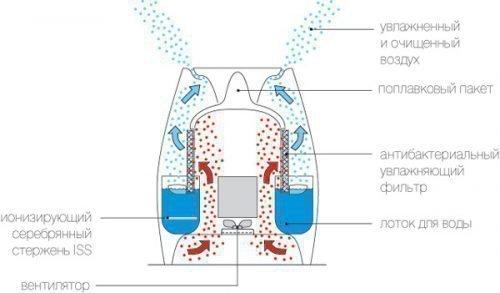 Устройство увлажнителя воздуха холодного испарения