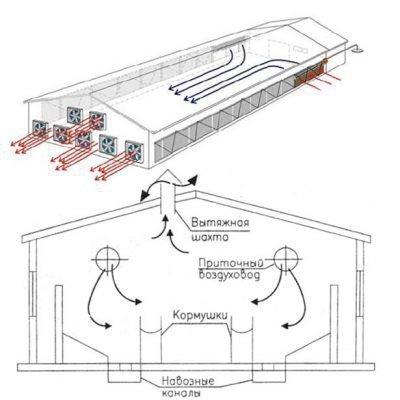 Схема вентиляции в свинарнике